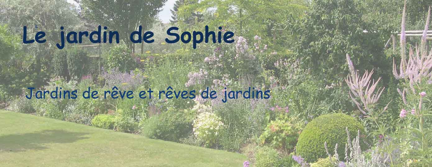le jardin de sophie. Black Bedroom Furniture Sets. Home Design Ideas