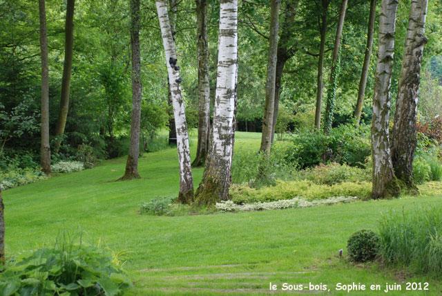 Le Sousbois ~ Les Bois De Sophie